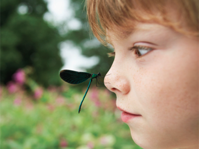 Child with dragonfly.